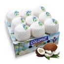 코코넛 열대과일 베트남 코코넛 4과 4kg내외(알당1kg)